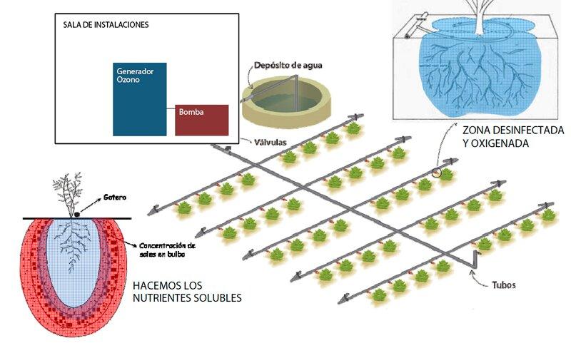 proyecto Riego con agua Ozonizada