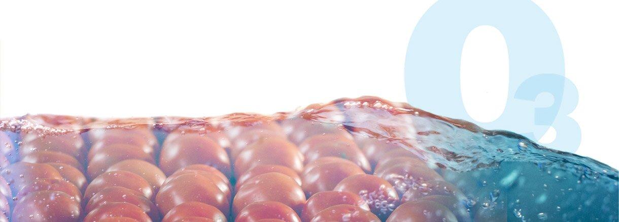 Hidrocooling con Ozono