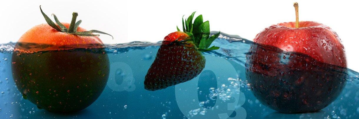 Agua con Ozono en Lavadero Hortofrutícola